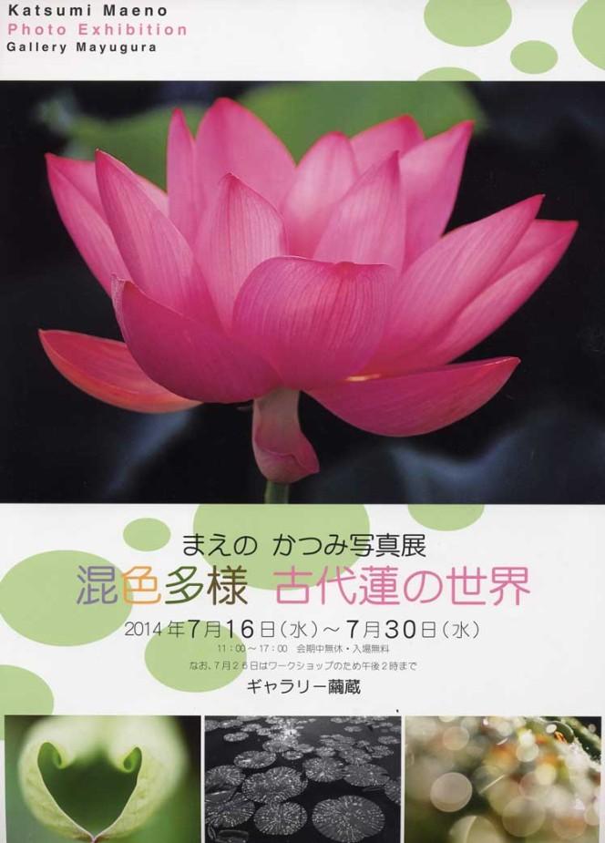 7/16~7/30 まえのかつみ写真展 混色多様 古代蓮の世界